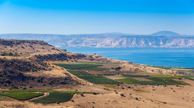 Northern Israel Tours